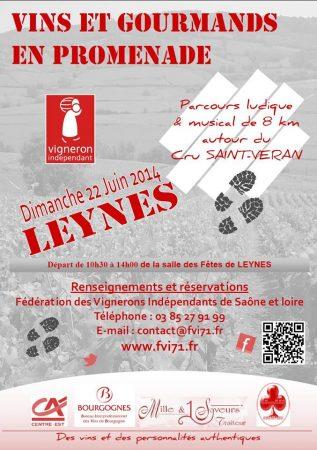 Leynes 22 JUIN CRU SAINT-VERAN THE VOLATILE